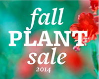 Graphic for the fall plant sale