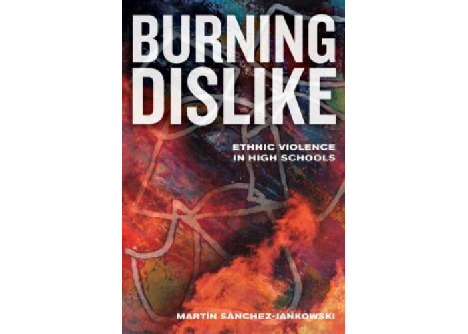 Burning Dislike: Ethnic Violence in High Schools